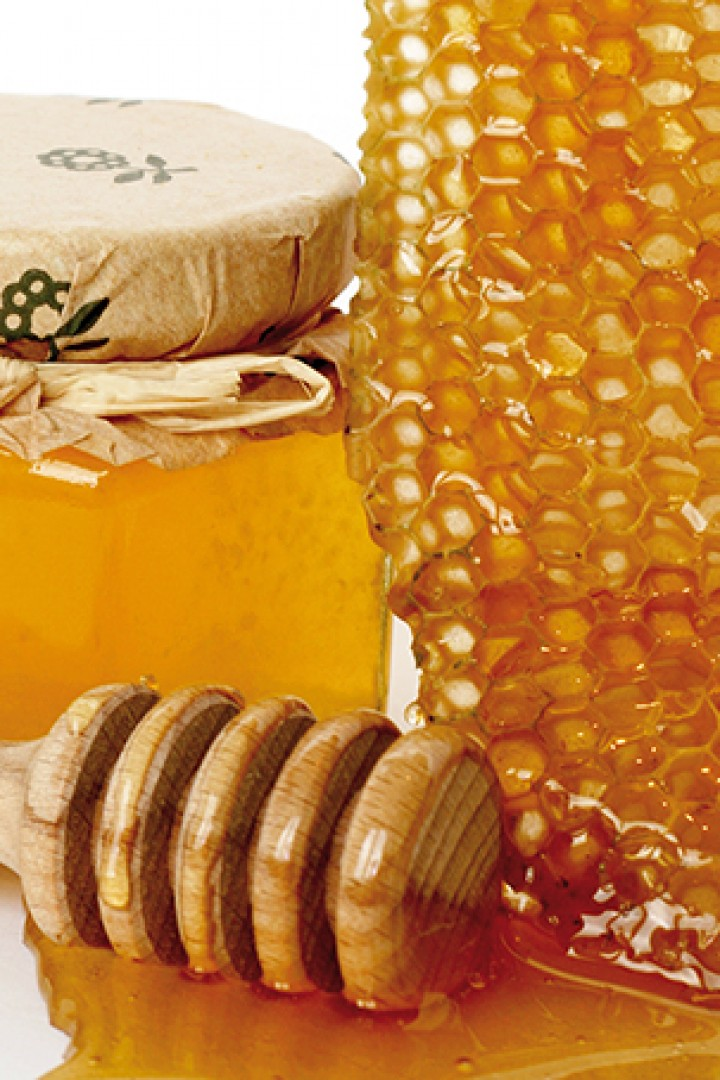 Manuka honey could fight off deadly infections in hospital equipment